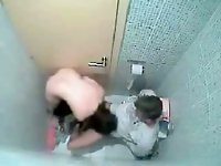 Couple fucking on the toilet bowl