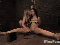 Maitresse Madeline makes her debut at Wiredpussy!!!
